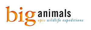 Biganimals Expeditions