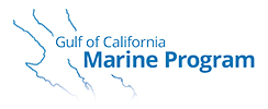 Gulf of California Marine Program