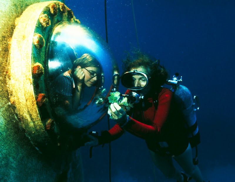 Dr Sylvia Earle To Talk In Support Of The Oceans On