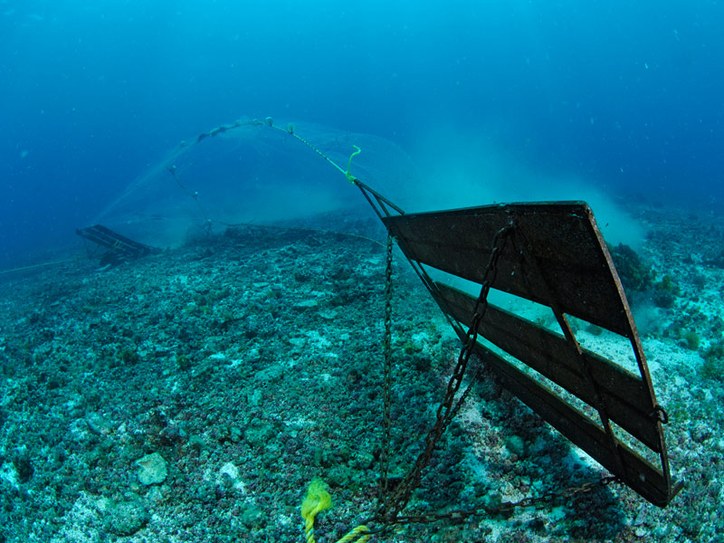 Bottom trawling 1 mission blue for 10 facts about the ocean floor