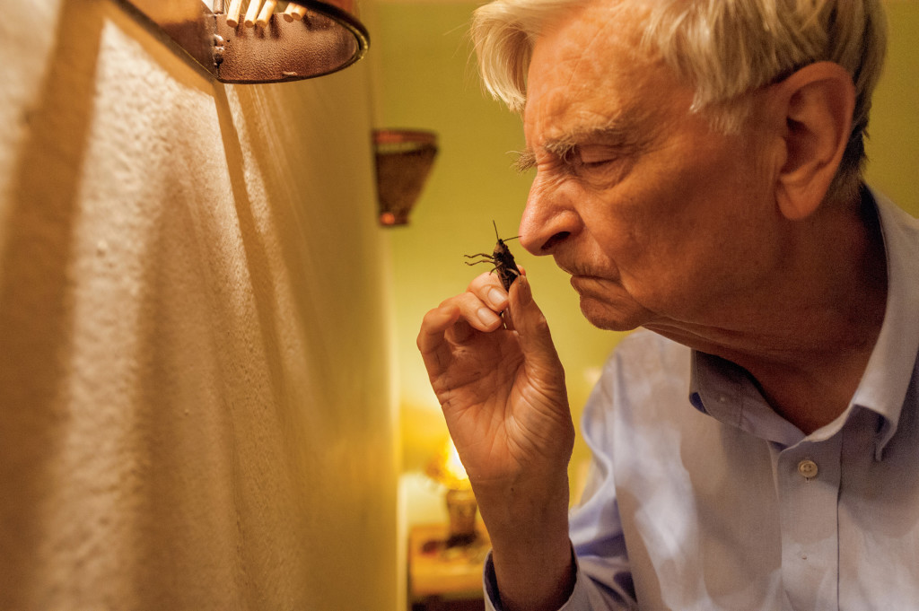Dr. E.O. Wilson smells a large insect to determine whether or not it's a grasshopper, which give off a distinct odor. © Dr. E.O. Wilson