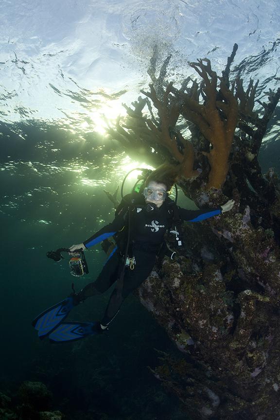 Sylvia Earle identifies the Bahamian Reefs as a Hope Spot. © Kip Evans