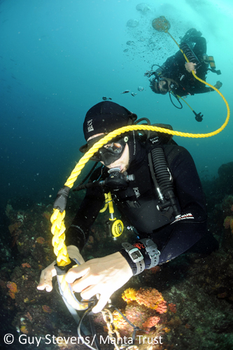 Researchers Attaching Listening Station to Reef. Photo: Guy Stevens/Manta Trust