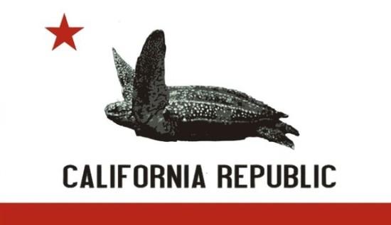 leatherback ca flag oceana