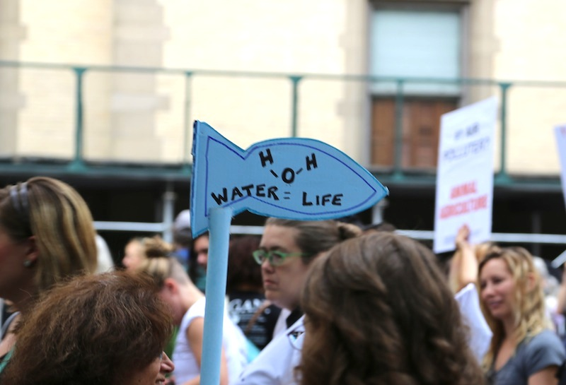 Marine issues such as ocean acidification and watershed destruction were represented in the march. © Courtney Mattison