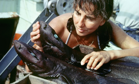 Dr. Eugenie Clark, The Shark Lady Dies at 92