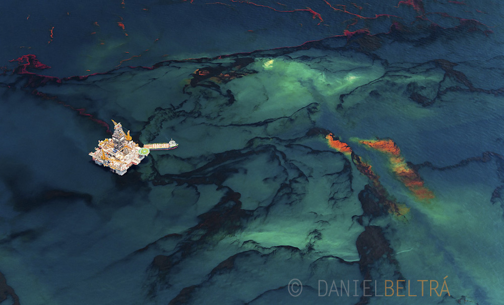 reality check five years after deepwater horizon mission blue