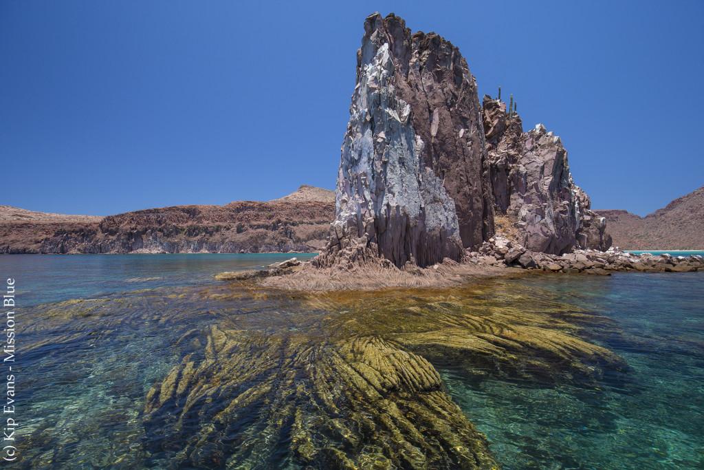 Coastline Near La Paz(c)KipEvansMissionBlueAG4V9483