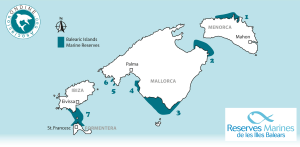 With seven declared marine reserves, the Balearic Islands are Spain's autonomous region with the most marine protected areas, reaching 49,000 ha in total (18% of inland waters). It sets a good example in the Mediterranean that it is possible to reconcile fishing and marine conservation. Image & caption courtesy Asociación Ondine.