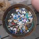 Sample of plastics collected from the ocean. Image © eXXpedition