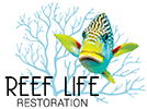 Reef Life Restoration Project